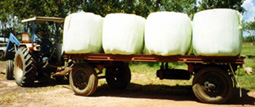 baled silage transportation
