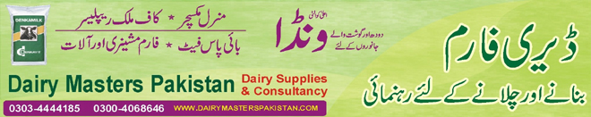 Dairy Farming Consultancy, feasibility, wanda, milk replacer