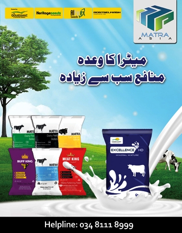 Pak Dairy Info - Feeding requirements of Dairy Animals
