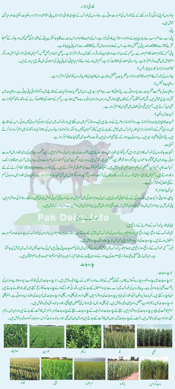 Pdf) practical dairy farming (in urdu).